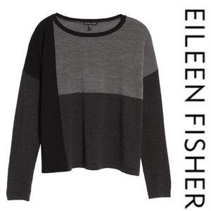 Eileen Fisher Colorblock Wool Sweater M